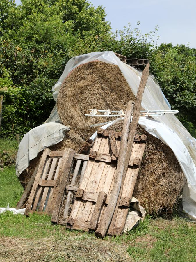 Big haystack with wooden pallets. In the farm stock photography