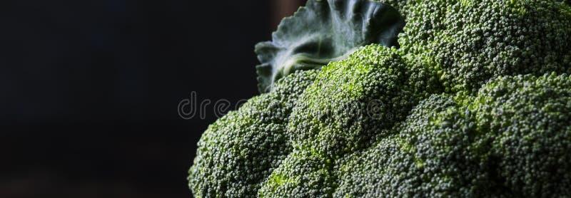 Big head of fresh green broccoli on dark rustic background, selective focus, minimalism, banner stock photo