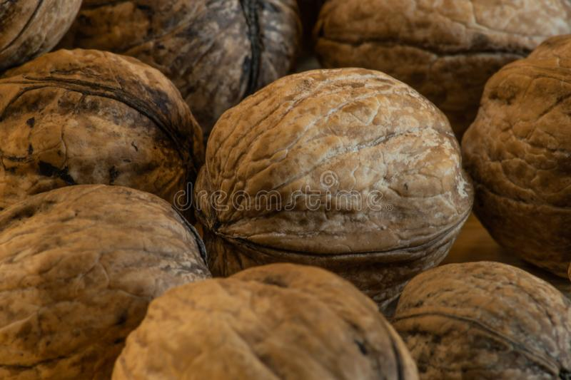 Big heap of walnuts with one white tinted walnut in the middle stock image