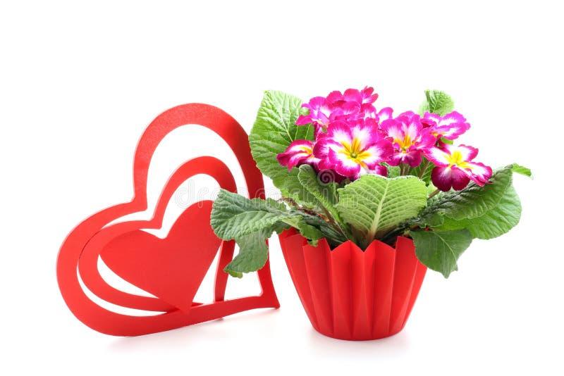 Big heart royalty free stock image