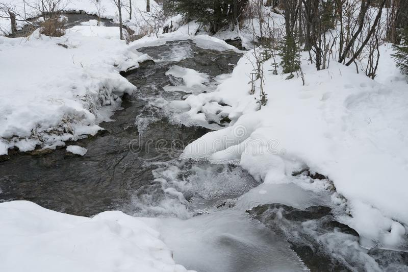 Big Hill Springs Provincial Park stream in winter. Stream adjacent to hike in Big Hill Springs Provincial Park in Alberta in the winter covered in snow stock photos