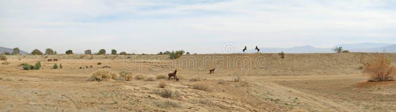 Big Horn Sheep Panorama - Metal Sculptures royalty free stock images