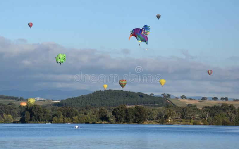 Big hummingbird and colourful Hot air balloons. Flying in the air above Lake Burley Griffin and Black Mountain, as part of the Balloon Spectacular Festival royalty free stock images