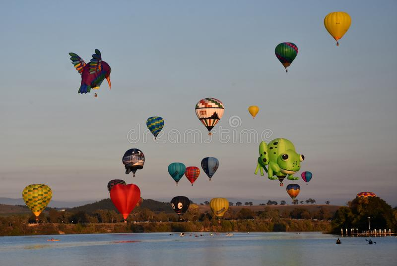 Big hummingbird, green frog and colourful Hot air balloons. Flying in the air above Lake Burley Griffin and Black Mountain, as part of the Balloon Spectacular stock images