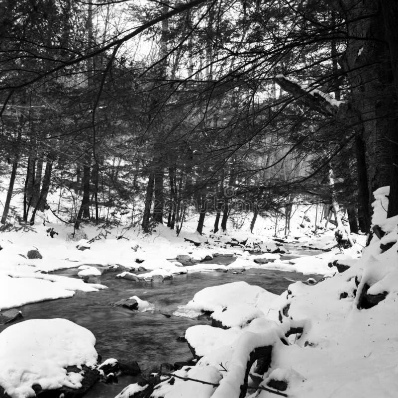 Free Big Hunting Creek Winter Snow Stock Image - 181472801