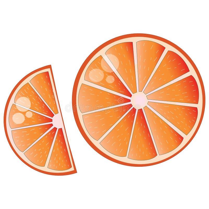 Big orange juicy slice illustration. Big juicy orange slice on white isolated illustration. Consists of two pieces royalty free illustration