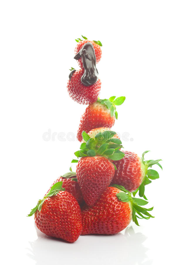 Big juicy strawberries in chocolate royalty free stock photo