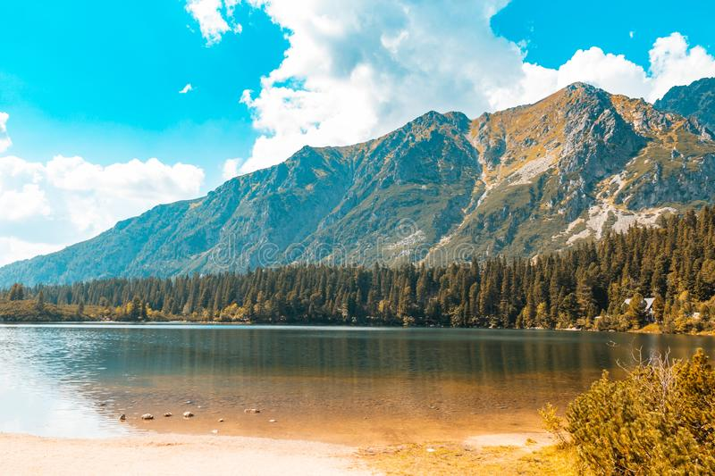Big lake among autumn mountains and pines against the blue sky.  royalty free stock image