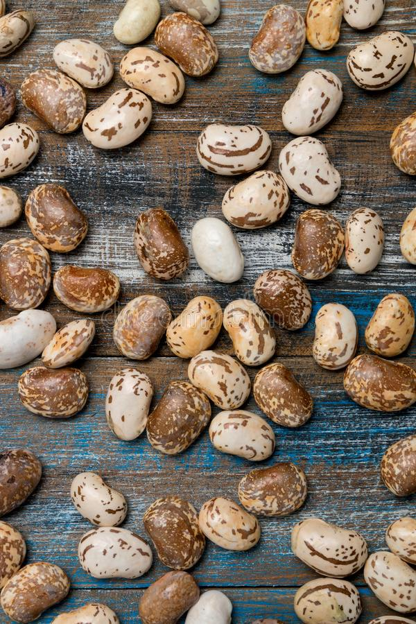 Big light brown bean grain, bean pod, a lot of beans texture pat. Tern background for web design and sale. time to plant or cooking. on old wooden background royalty free stock photo
