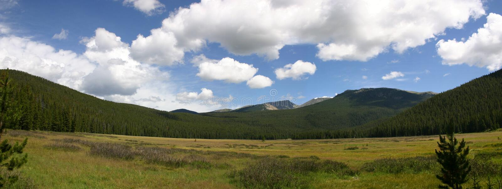 Download Big Meadow stock photo. Image of color, mountain, open, grass - 19994