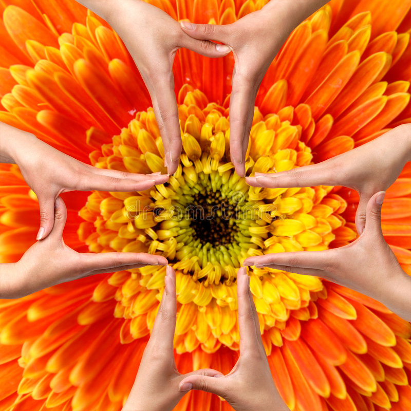 Big Medical Cross symbol from hands isolated. Female hands showing big medical cross symbol concept orange daisy flower background stock images
