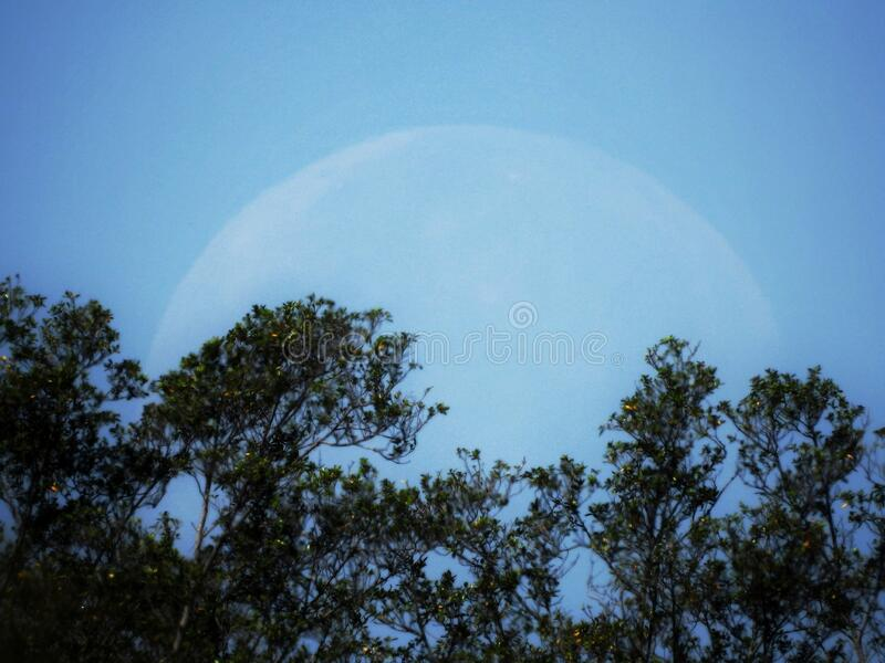 Big moon with a blue sky stock images