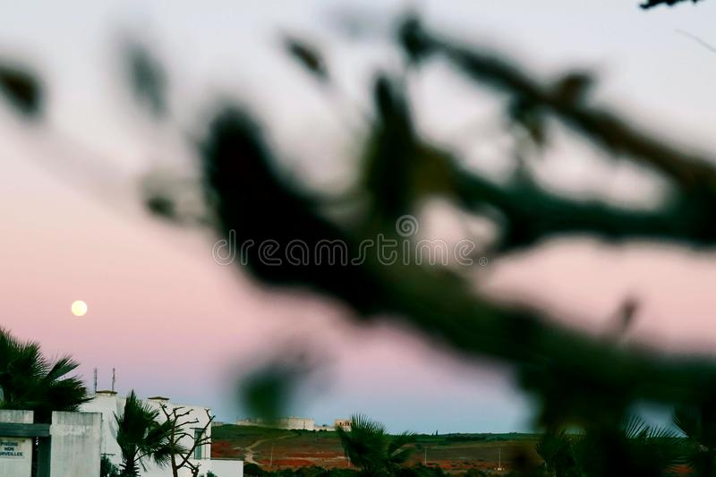 Big Moon view in sunset. With pink sky stock photography