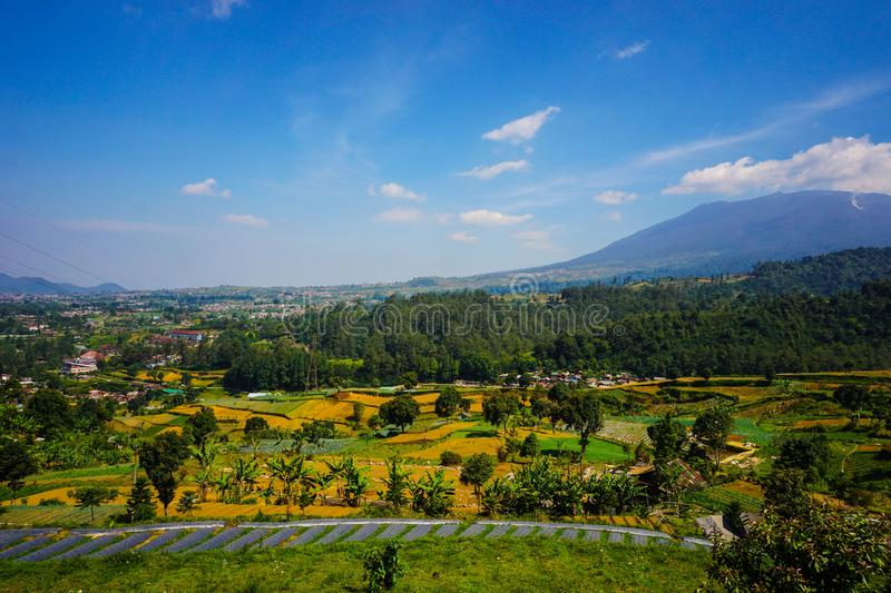 Big mountain on the farming area with landscape scenery on tropical paradise country - photo indonesia stock photo
