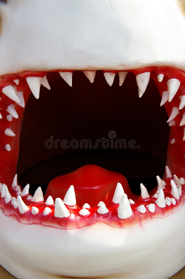 Big mouth. Model shark mouth closeup, front teeth are sharp