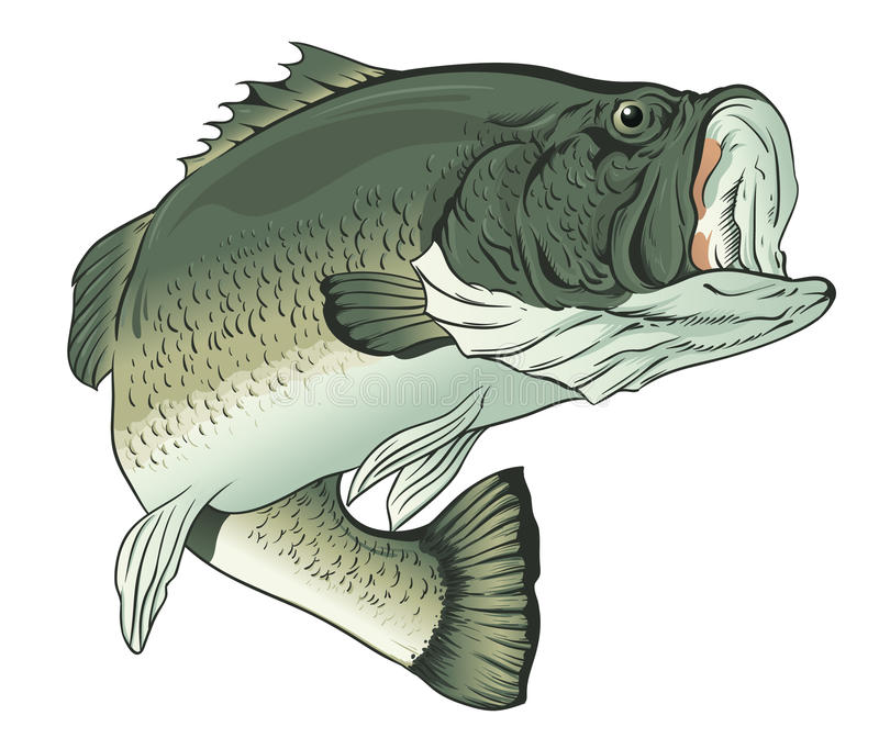 Big mouth bass stock vector illustration of fishing for Big mouth fish
