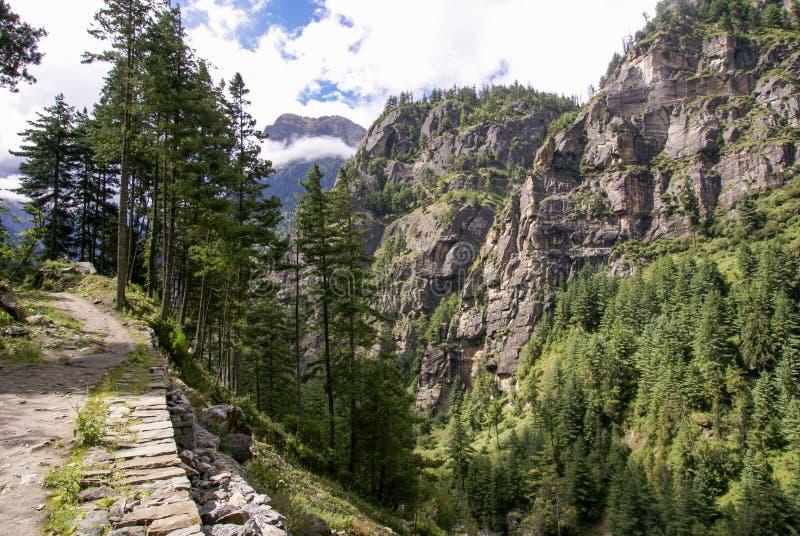 Big Nature Trail royalty free stock photos