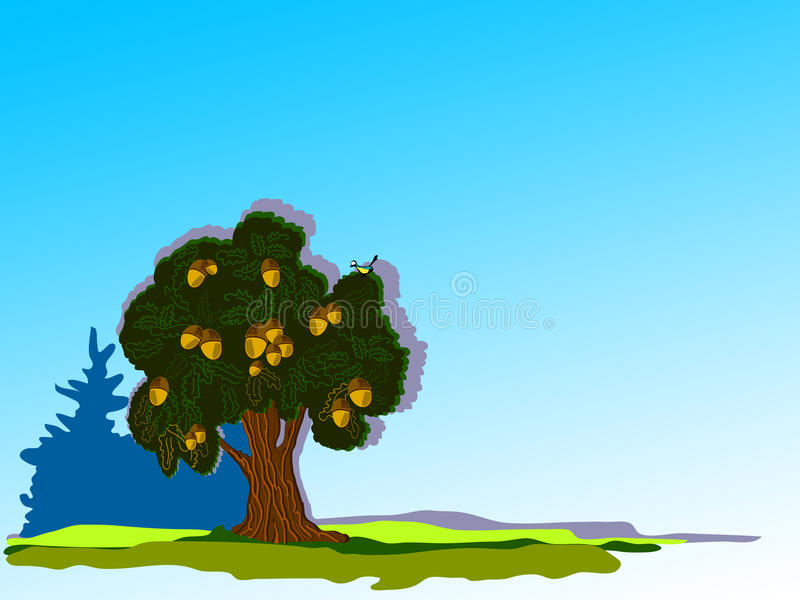 Download Big oak stock vector. Illustration of green, solar, summer - 18227833