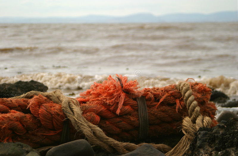 Download Big old rope stock image. Image of coastal, tied, rope, estuary - 8107