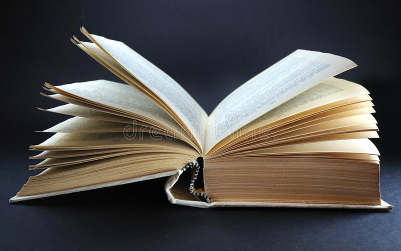 Download Big open book stock photo. Image of empty, information - 14225376