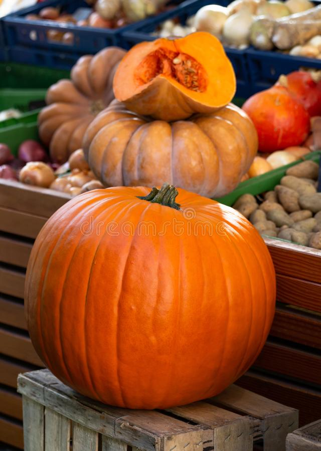 Big Orange Pumpkins in the Foreground, with Pumpkins different Sizes in the background, on market royalty free stock images