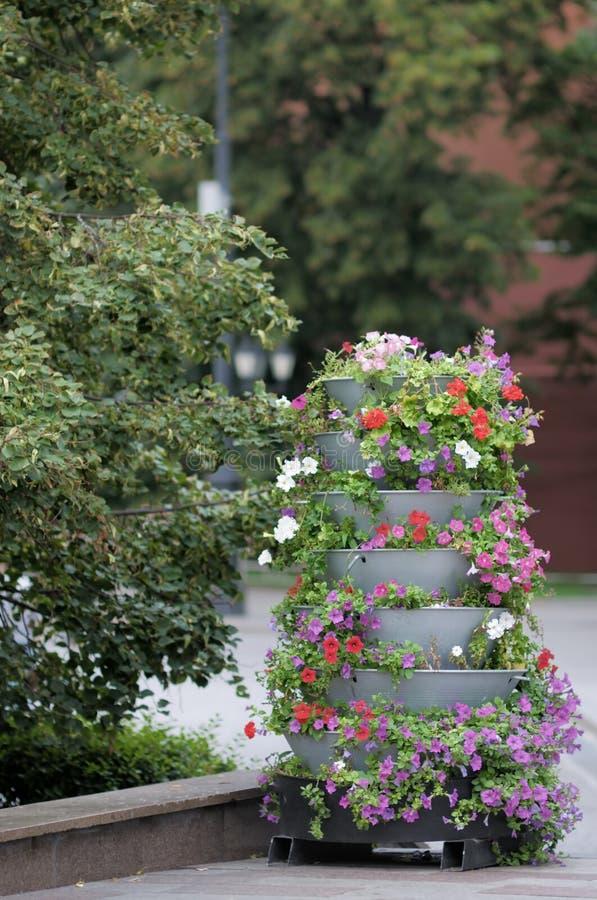 Big outdoor flowerpot stock images