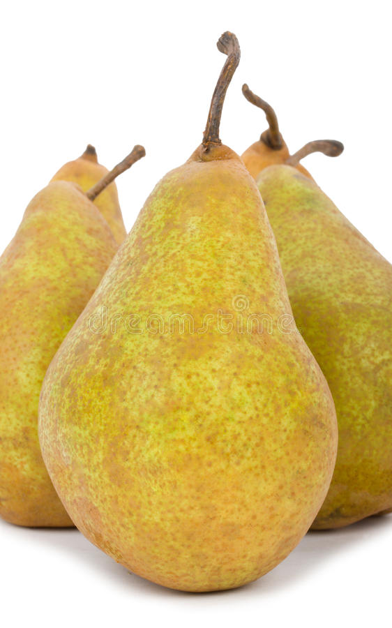 Download Big pears isolated stock photo. Image of brightly, stem - 29111372