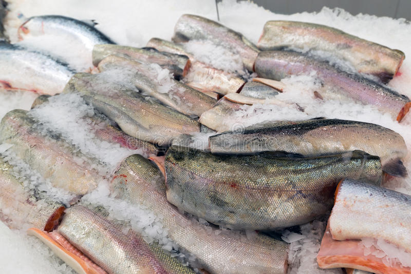 The big pieces of red fish on ice in fish market stock images