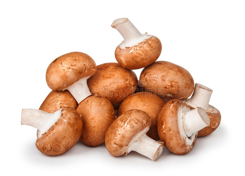 Big pile of brown mushrooms. On isolated white background royalty free stock images
