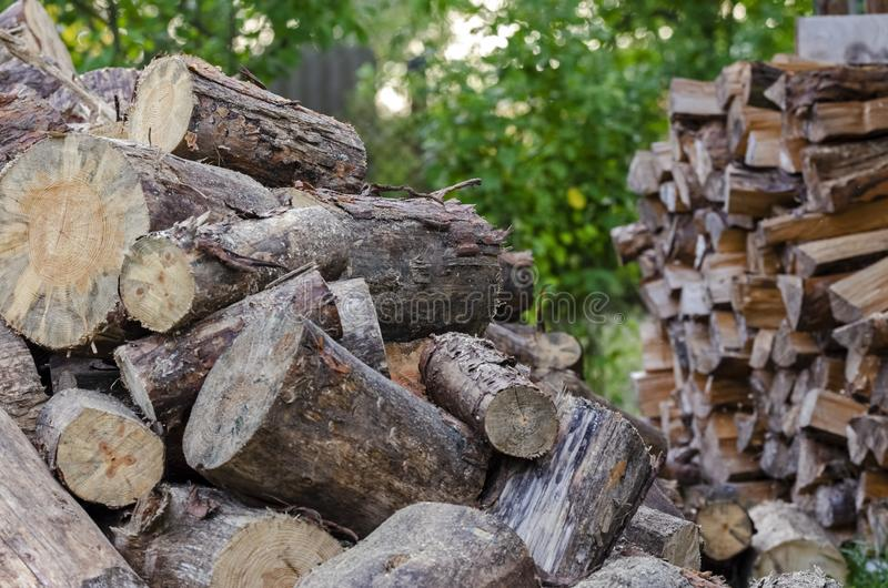 Big pile of conifers firewood. In the yard and chopped firewood stock photo