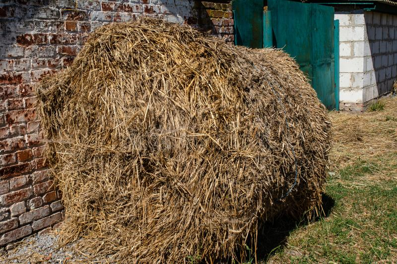 Big pile of dry hay near the brick wall in the village. In Ukraine stock photos