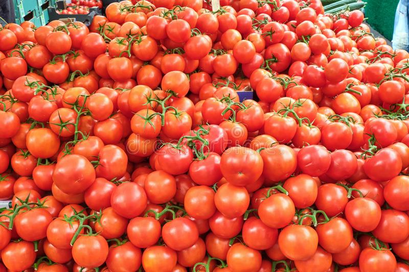 Big pile of fresh tomatoes. For sale at a market stock photo