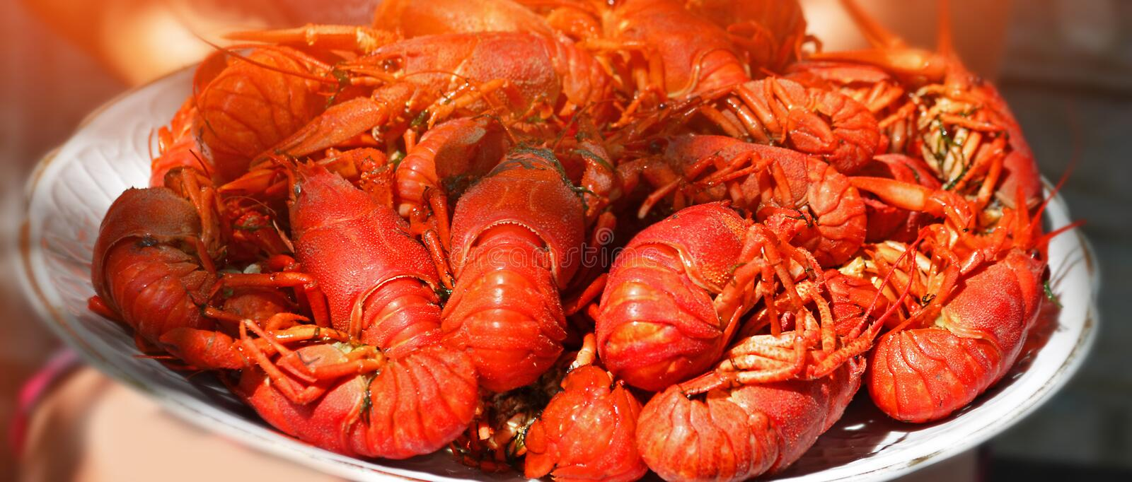 Big plate of tasty boiled crawfish closeup, seafood. Lobster atlantic food royalty free stock photo