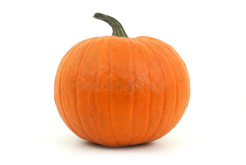 Big pumpkin in studio on white background for halloween or thanksgiving royalty free stock image