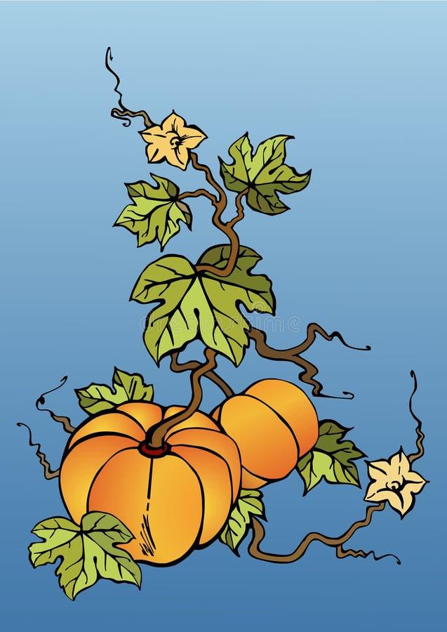 Download Big pumpkins stock vector. Illustration of food, harvest - 3152655