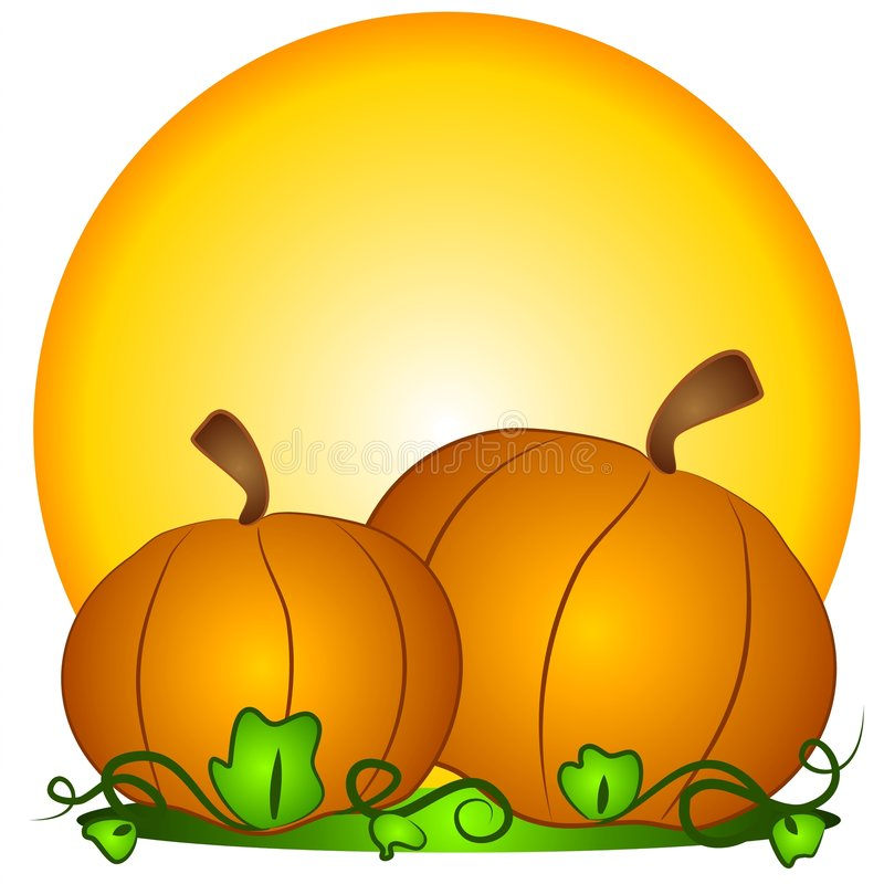 Big Pumpkins Sun Clipart. A couple of big orange pumpkins in a pumpkin patch with sun in the background. A classic symbol for thanksgiving and halloween