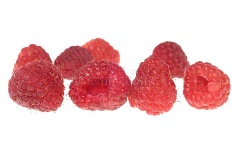 Download Big raspberry stock photo. Image of raspberry, macro, isolated - 1446154