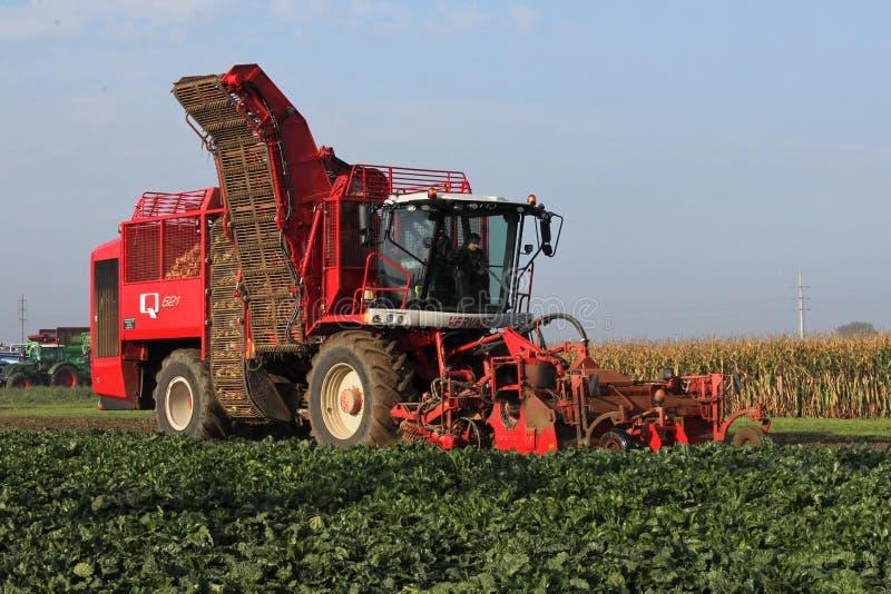 A big red beet harvester closeup is harvesting beets. Oudenaarde, Belgium - sep 23, 2017: a big red beet harvester is harvesting beets in the fields during a big stock photo