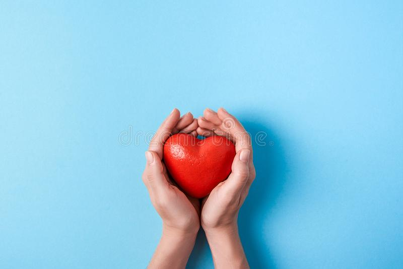 Big red heart in women`s hands on a blue background. Copy space stock image