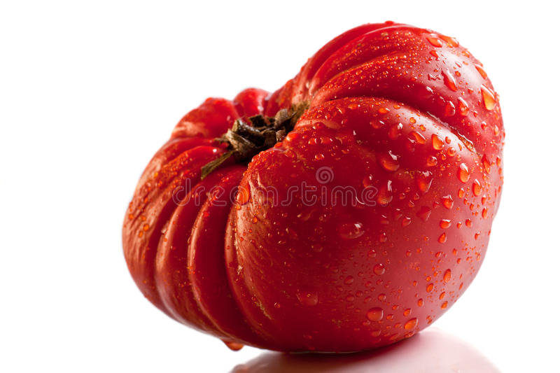 Download Big Red Tomato Isolated Over White Stock Image - Image: 17458047