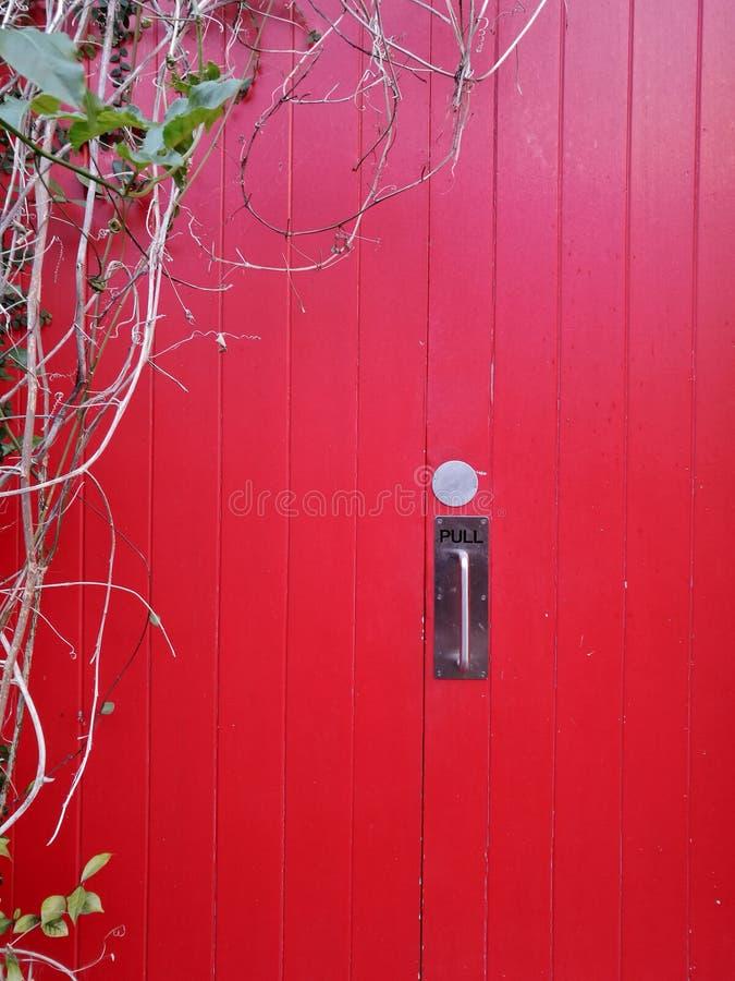 Big red wooden locked door with climbing plant on the left. Big red wooden locked door with creeper climbing plant on the left side stock photos