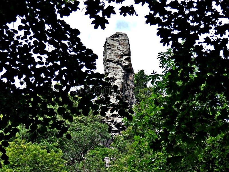 A big rock at Balaton. Big rock balaton green branch stock photos