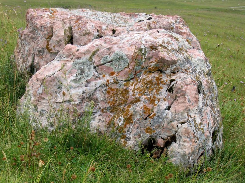 Download Big rock at the field stock image. Image of lichen, meadow - 612457