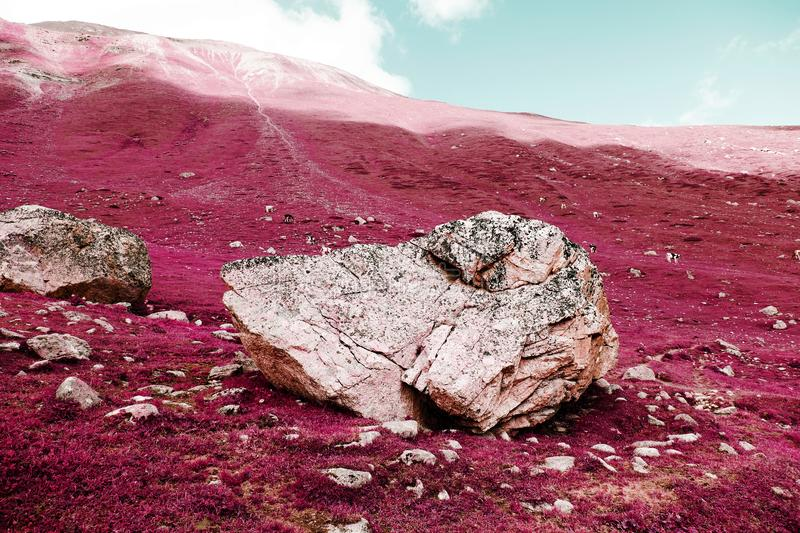 A big rock on the swiss alps in color infrared.  stock image