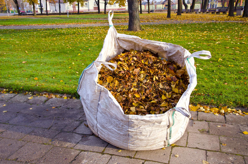 Big sack with autumn leaves in city park stock photography