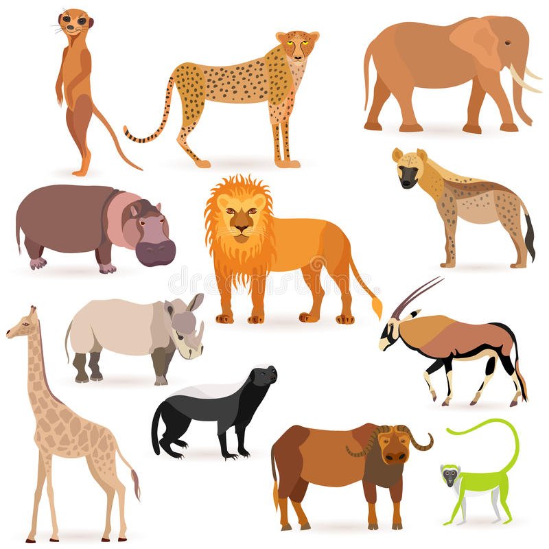 Big Set with African Animals vector illustration