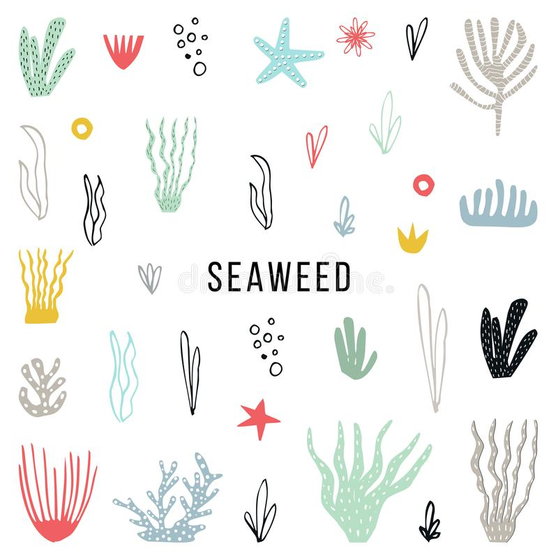 Big set of colorfull seaweed hand drawn and cut out of paper. Vector illustration.  royalty free illustration