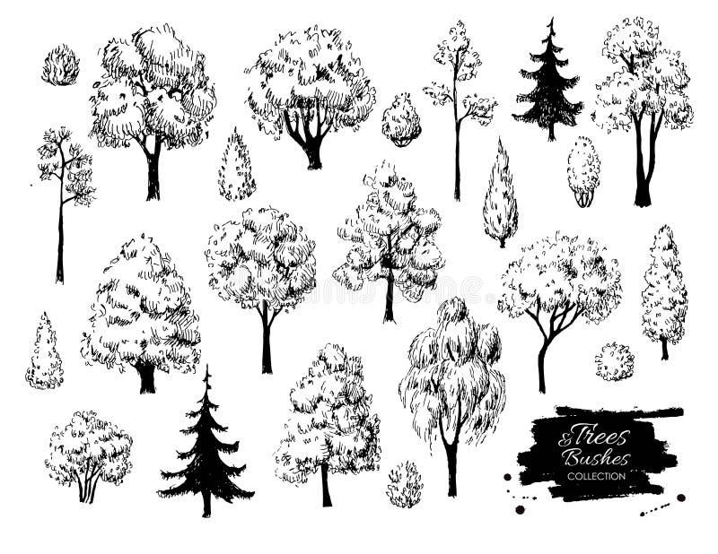 Big set of hand drawn tree sketches. stock illustration