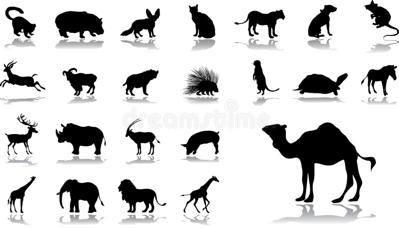 Big set icons - 11. Animals. Set of 23 vector icons for web