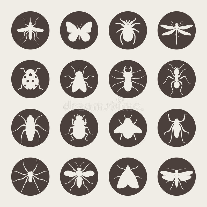 Big set of Insects icon vector illustration